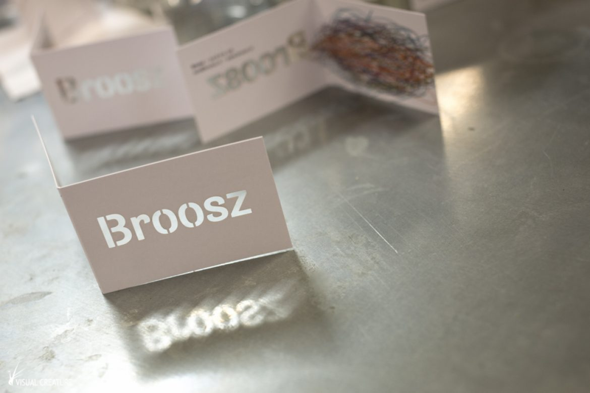 A look into the process of branding Broosz